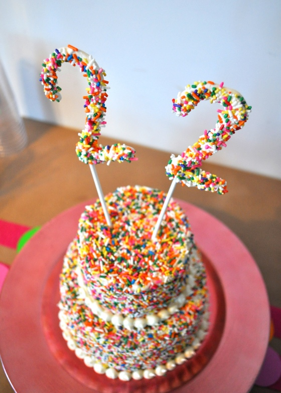 I even made some white chocolate 2s covered in sprinkles for a cake topper.